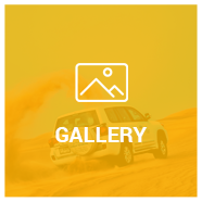 Liwa Safari Gallery
